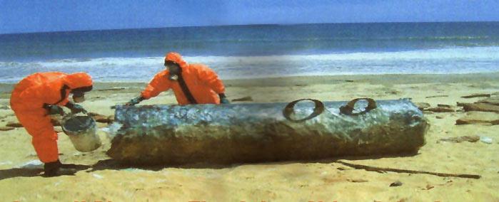 Сомалийский берег