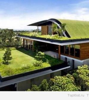Озеленение кровли дома