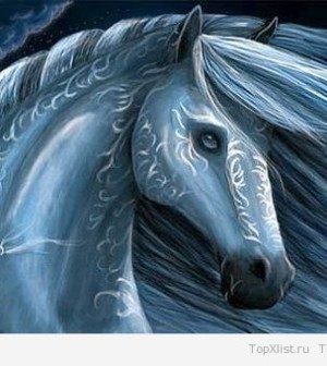 Год Лошади: какие минералы являются его талисманами?