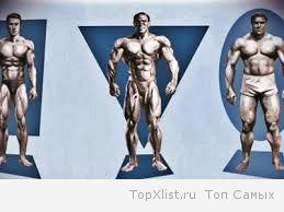 Мезоморфик - идеальный силуэт. Какую диету и тренировки следует использовать людям с мезоморфной структурой тела?