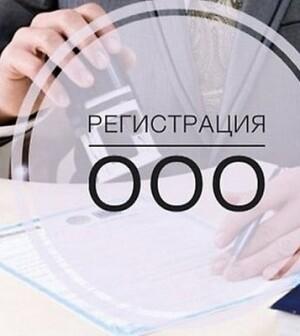 Особенности открытия «ООО» для начинающих бизнесменов